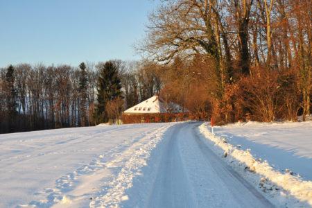 Rheinbundhaus Schnee total